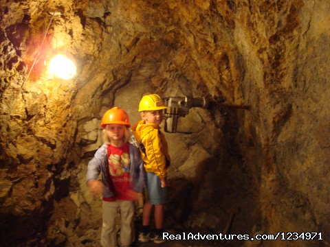Hidee Mine - Take A Guided Tour - Victorian Retreat In Historic Town:  Mtn View
