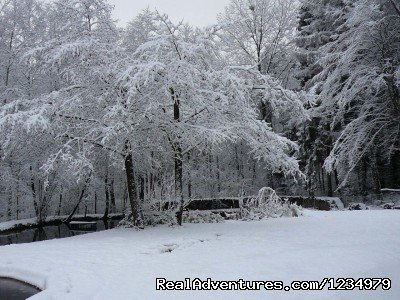 Winter in the gardens | Image #13/20 | Peaceful Secluded Getaway at L Etang du Wayot