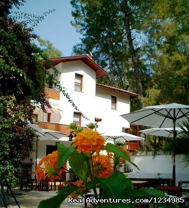 Garden - Discover The Jewel of Gocek....