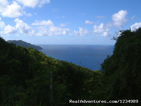 St. Croix (#20 of 26) - Ocean's Edge - Great Oceanfront Views, 2 Levels