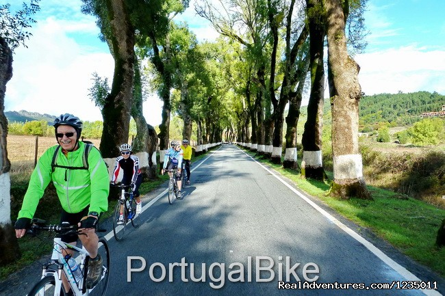 Image #6/26 | Portugal Bike - The Ancient Medieval Villages