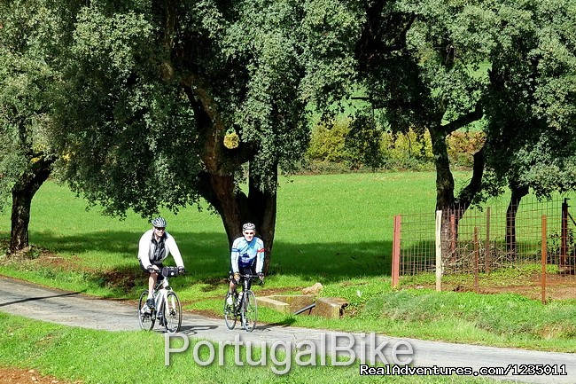 Image #14/26 | Portugal Bike - The Ancient Medieval Villages