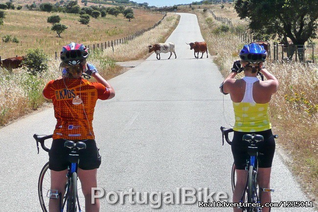 Image #17/26 | Portugal Bike - The Ancient Medieval Villages