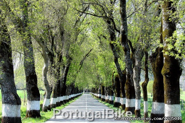Portugal Bike - The Ancient Medieval Villages