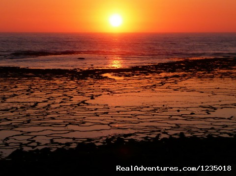 - Portugal Bike - The Beautiful Alentejo Beaches