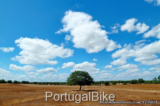 Image #20/26 | Jewels of Portugal