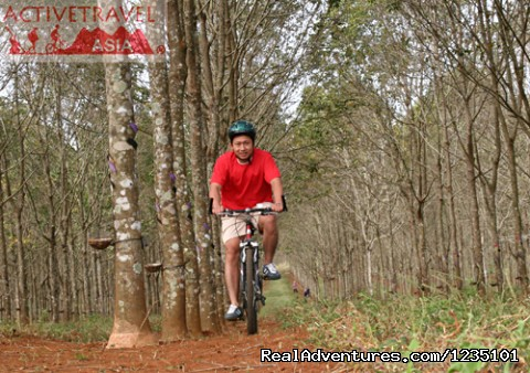 Biking Mekong Explorer, Vietnam - Biking Mekong Explorer, Vietnam 04 days