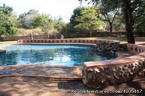 - Kruger Park Safari Holiday