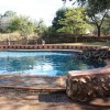 Kruger Park Safari Holiday