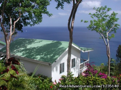 AVOCADO COTTAGE at Nature' Paradise. (#2 of 21) - NATURE'S PARADISE: Amazing Views, Eco-Adventures