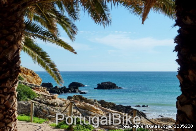 Image #15 of 26 - PortugalBike - The Gorgeous West Coast