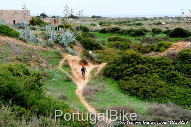 Image #25 of 26 - PortugalBike - The Gorgeous West Coast