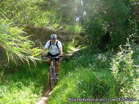 Image #7 of 25 - Portugal Bike - Crossing the Algarve