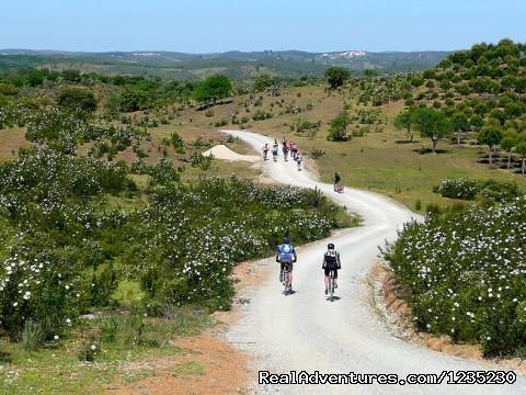 Image #9 of 25 - Portugal Bike - Crossing the Algarve