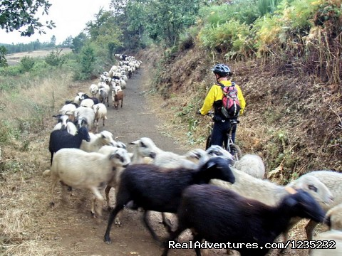 Image #20 of 25 - PortugalBike: Granitic Villages on the Mountains