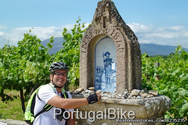 Image #17 of 26 - Camino de Santiago - The Way of St James