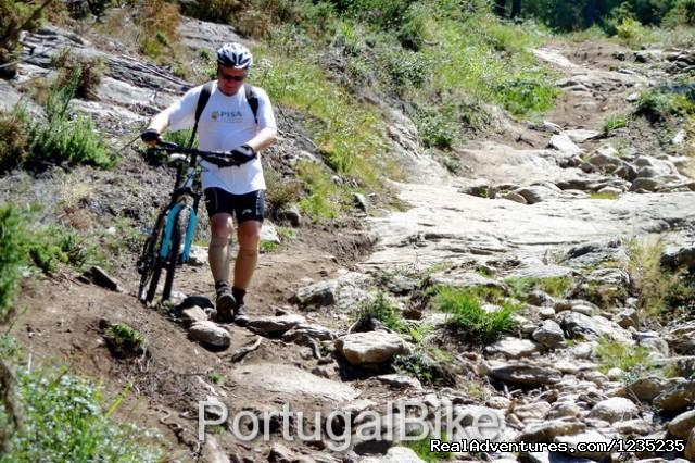 Image #11 of 26 - Camino de Santiago - The Way of St James