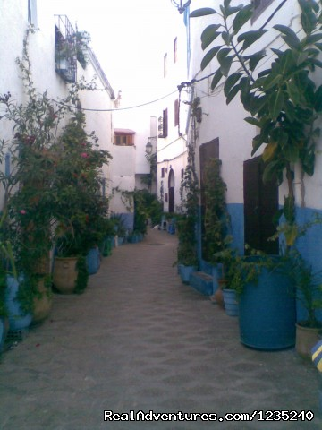 - Tangier discovery