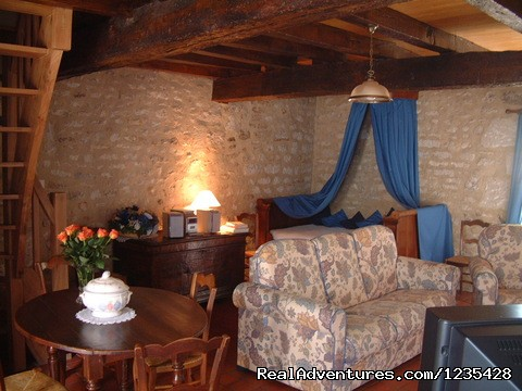 Living room - Romantic two bedroomed cottage in Vendee, France