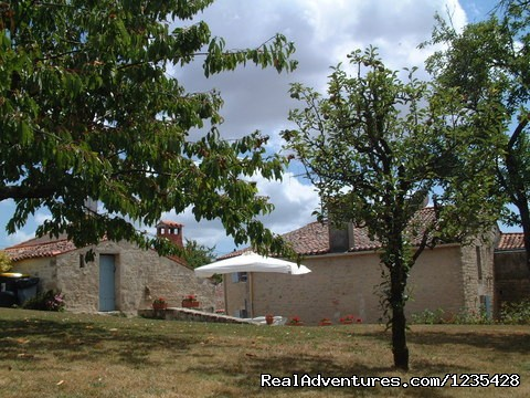 Garden and terrace - Romantic two bedroomed cottage in Vendee, France