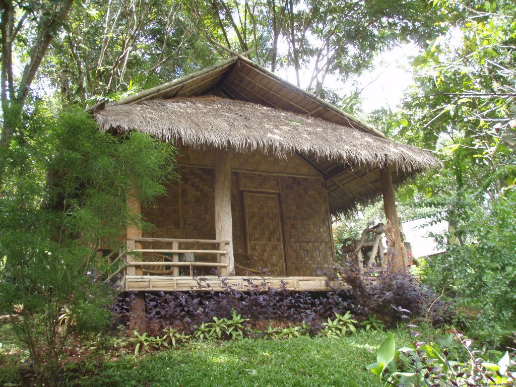 Accomodation | Image #15/26 | THE Rainforest Retreat Experience in Thailand