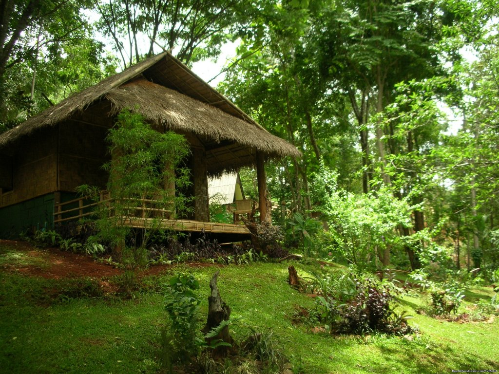 Accomodation | Image #11/26 | THE Rainforest Retreat Experience in Thailand