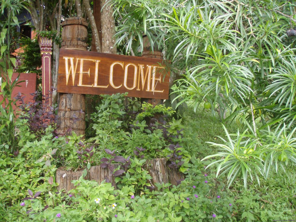 Welcome | Image #16/26 | THE Rainforest Retreat Experience in Thailand