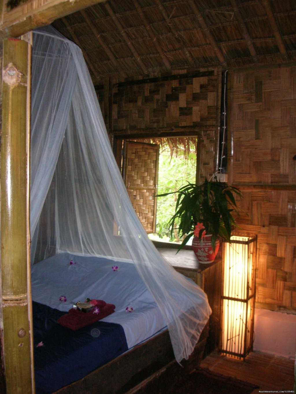Accomation | Image #19/26 | THE Rainforest Retreat Experience in Thailand