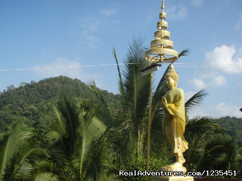 Thailand - THE Rainforest Retreat Experience in Thailand