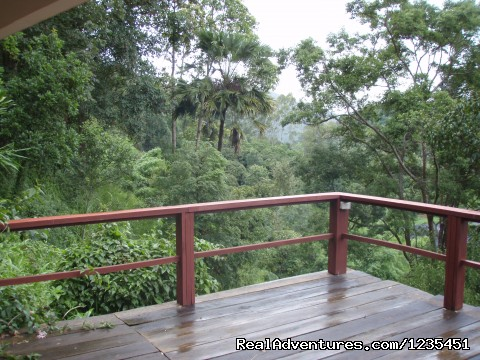THE Rainforest Retreat in Thailand (#8 of 26) - THE Rainforest Retreat Experience in Thailand