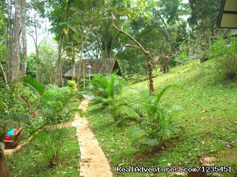 Accomodation is private and secluded - THE Rainforest Retreat Experience in Thailand