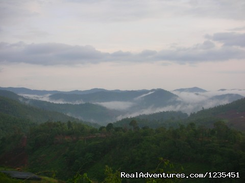 The RainForest Retreat Views - THE Rainforest Retreat Experience in Thailand