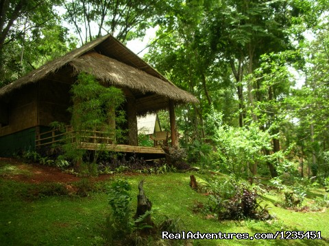 Accomodation - THE Rainforest Retreat Experience in Thailand
