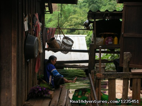 Come and experience the REAL Thailand - THE Rainforest Retreat Experience in Thailand
