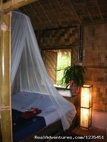 Accomation - THE Rainforest Retreat Experience in Thailand