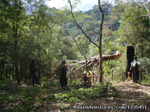 One of the obstacles encountered on the way - THE Rainforest Retreat Experience in Thailand