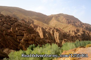 Fingers of the Monkey in Dades Gorge - Real Morocco Tours