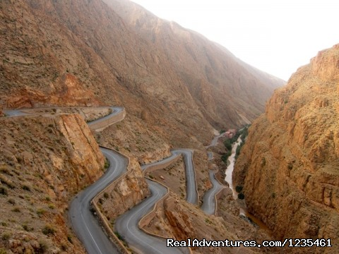 Scorpian road in Dades Gorge (#11 of 26) - Real Morocco Tours