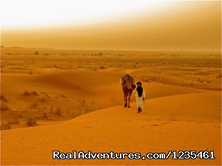 Desert Treks (#23 of 26) - Real Morocco Tours