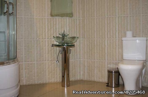 Bathroom and Shower - - Alis Motel -