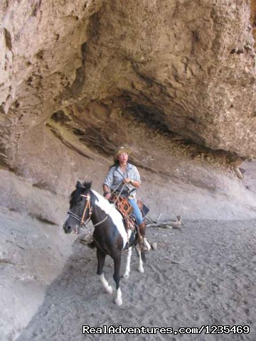 - Dinner trail rides to a great Mexican Resturant