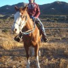 Dinner trail rides to a great Mexican Resturant