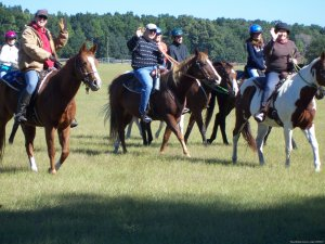Horseback Riding and Trail Rides State Parks Horseback Riding Ocala, Florida
