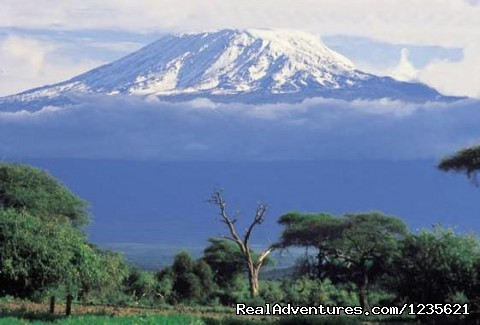 Kilimanjaro Hiking Information - Adventure travel climbing Kilimanjaro trips
