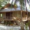 Palmetto villas