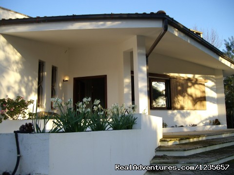 Beautiful villa in Salento