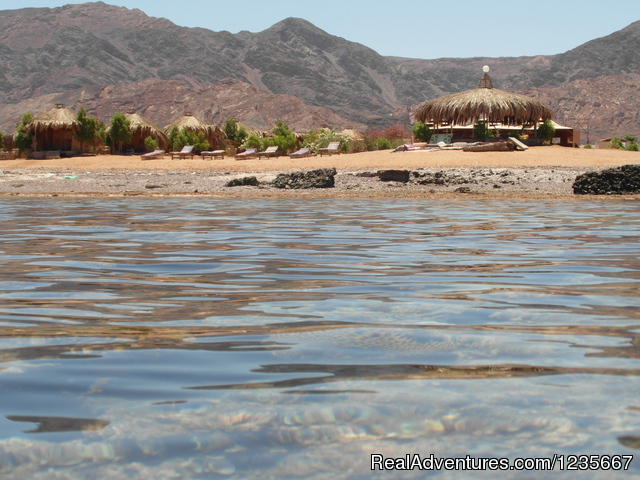 View from the Red Sea negmasinai - Negma Bedouia RedSea vacation without mass tourism