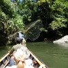 Kalimantan Tour Guide
