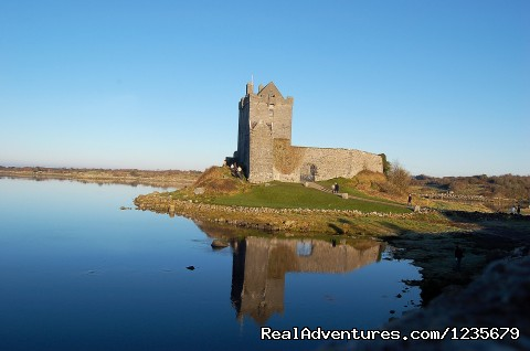 Galway Tour Company: Fun Day Tours Dunguaire Castle