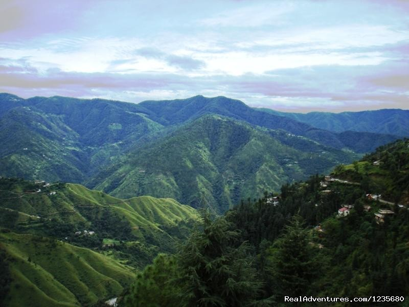 Valley View | Image #4/16 | Aapo Aap Home Stay (B&B), Shimla-India